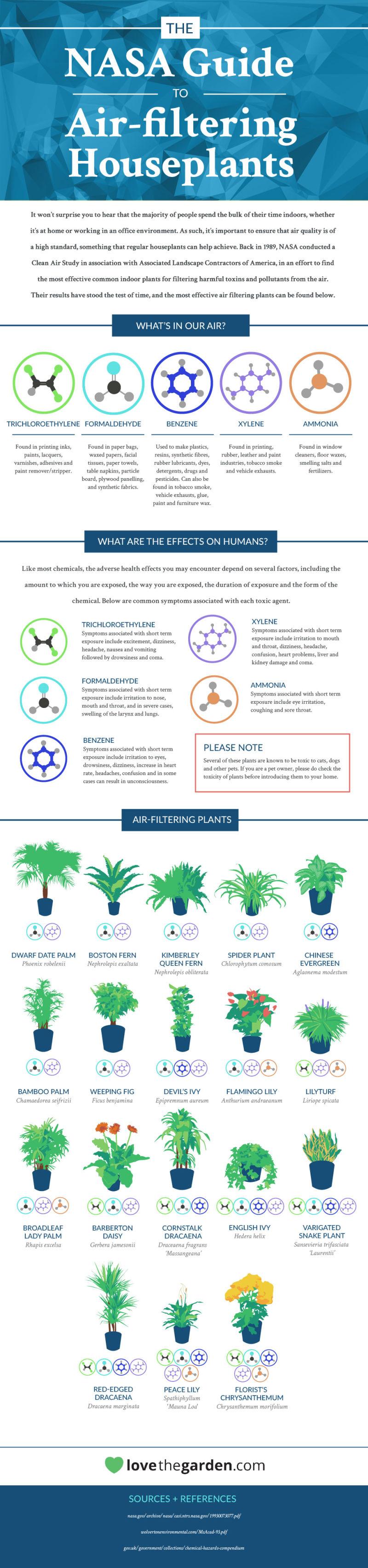 NASA air filtering houseplants