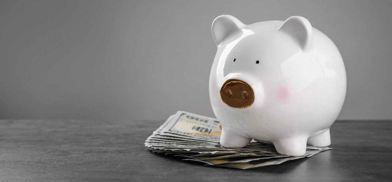 Piggy Bank on top of Money