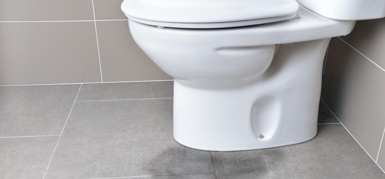 Toilet Overflowing onto Floor