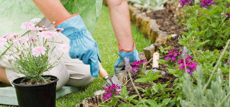 Woman Renovating Her Garden